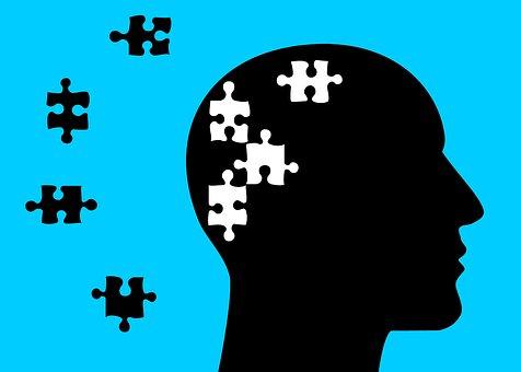 hersenen 4